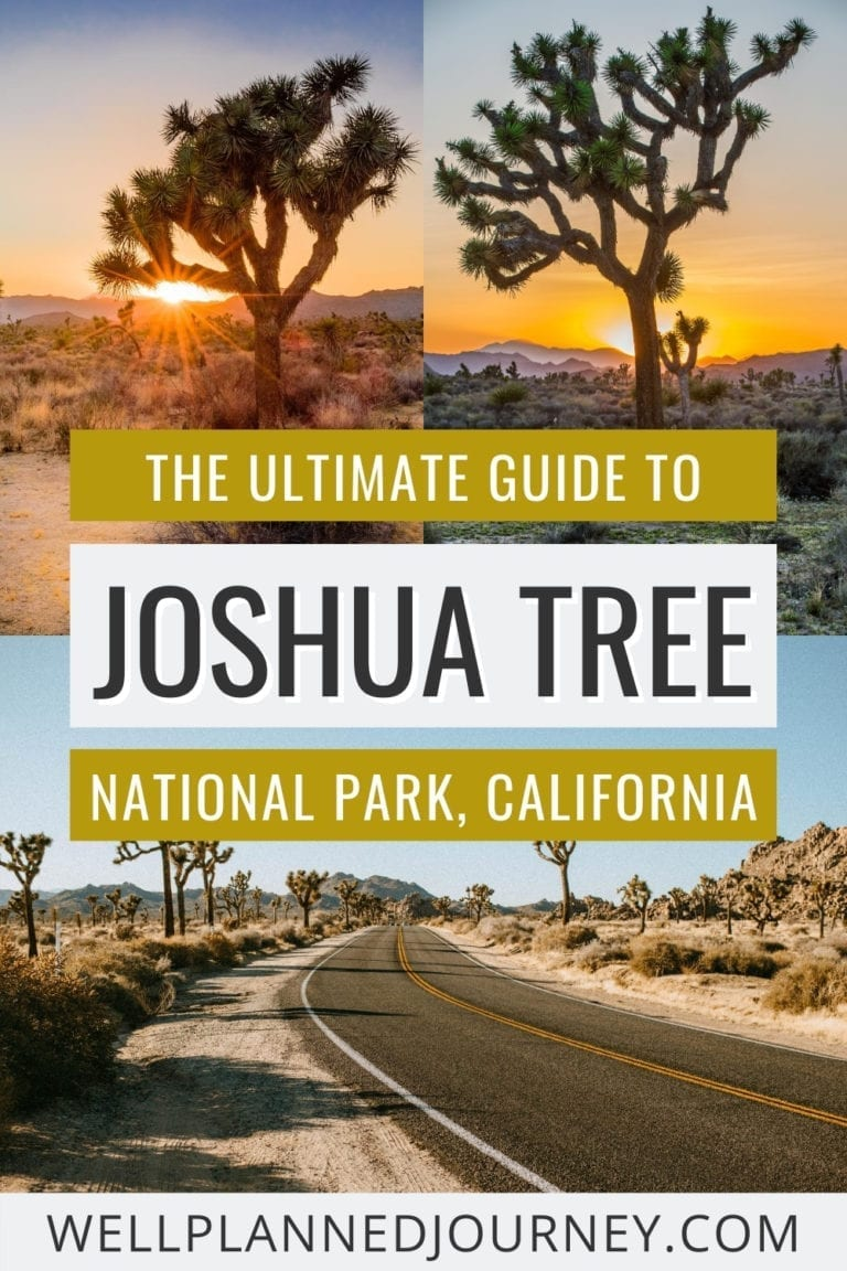 One Day in Joshua Tree National Park: The Ultimate 1-Day Joshua Tree Itinerary