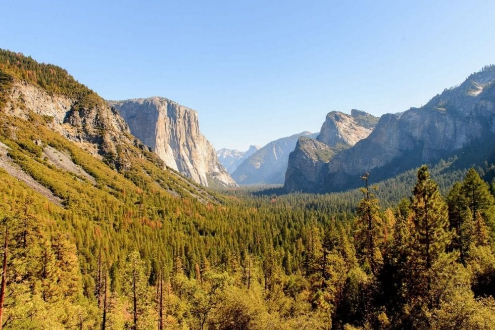 Yosemite Valley in the distance with a valley of trees in the foreground in Yosemite National Park in the California Sierras