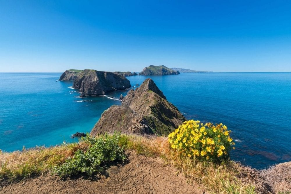 A string of islands with yellow wildflowers growing near the viewpoint on Channel Islands National Park in California