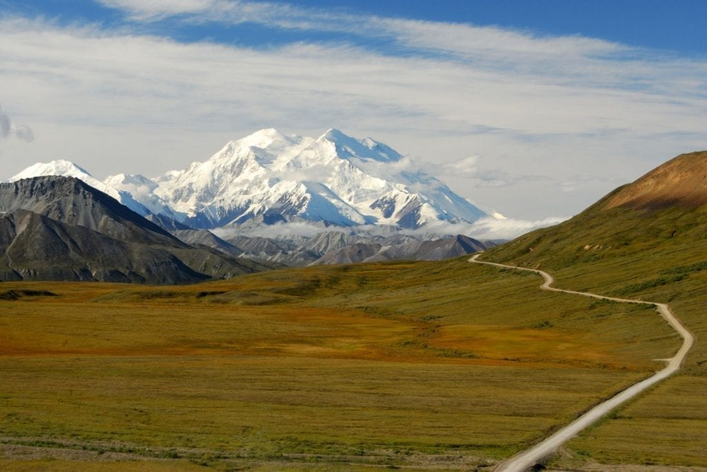 Mount Denali looms in the distance across a grassy valley in Denali National Park