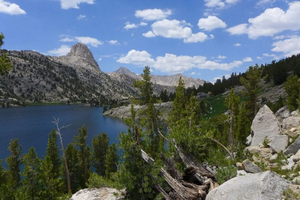 Evergreen trees frame an alpine lake and mountains in Kings Canyon National Park in California