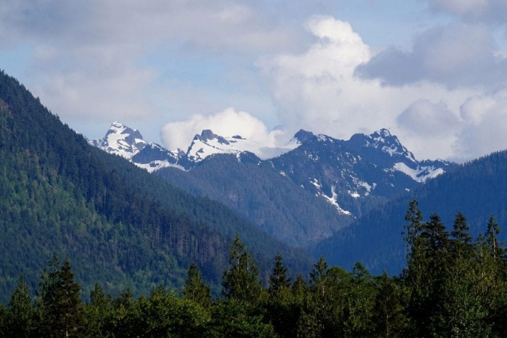 The snow covered peaks of the cascade mountains in the distance behind an evergreen forest in North Cascades National Park in Washington