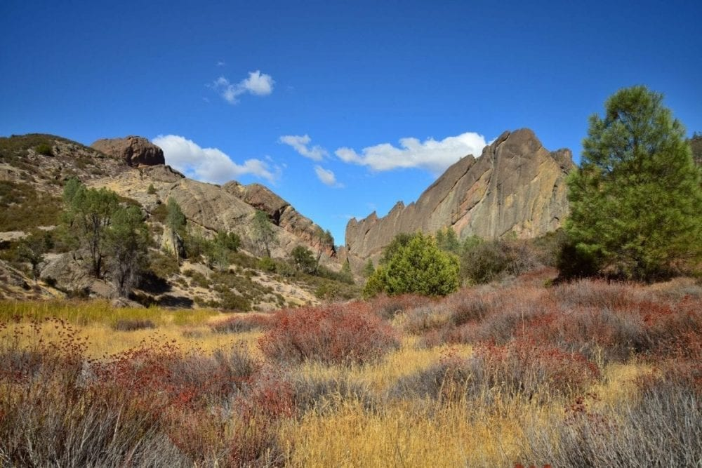 A colorful prairie of tall, dry grass sits between two small mountains in Pinnacles National Park in California