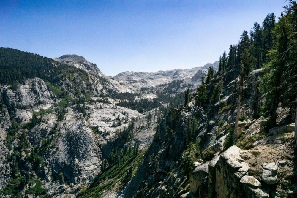Evergreen trees and sequoia redwoods grow along the rocky gray mountainside in Sequoia National Park in California