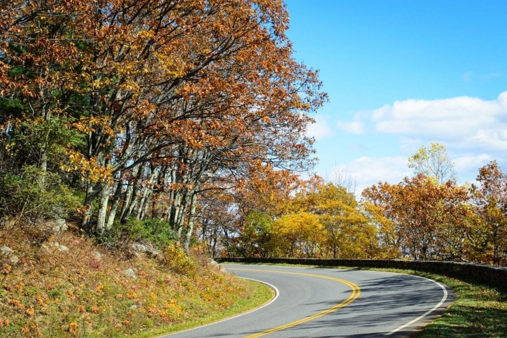Trees with orange and red leaves hover over Skyline Drive in the fall in Shenandoah National Park in Virginia