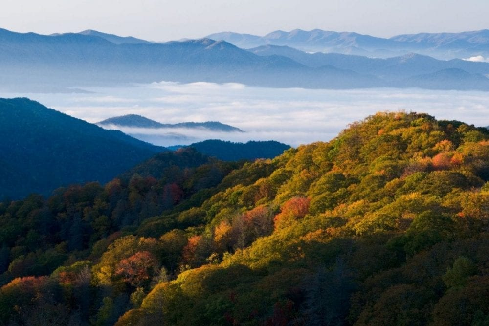 Low hanging fog hovers between the hazy blue ridge mountains and the changing fall colors of the forest