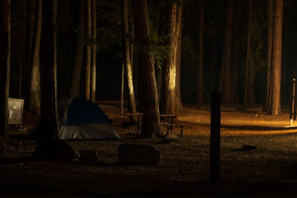 A single tent in a dark campsite in Yosemite Valley