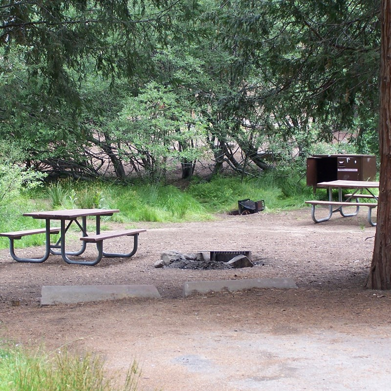 Azalea Campground in Kings Canyon National Park