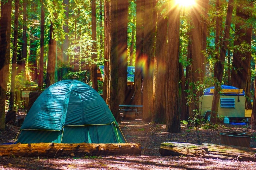 tent set up in the forest for the best camping in kings canyon national park