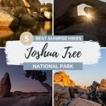 Pinterest pin for best Joshua Tree sunrise spots