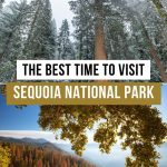 Best Time to Visit Sequoia National Park Pinterest Pin