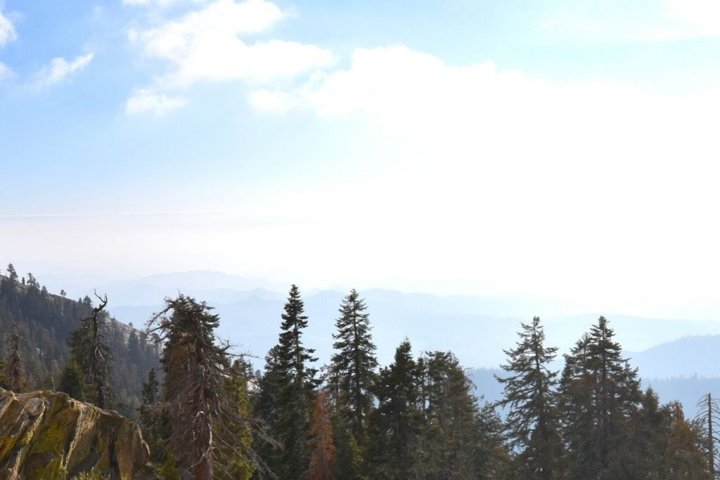 View from the top of Big Baldy hike in Sequoia National Park