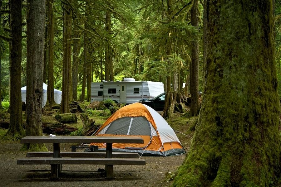A picnic table and tent are set up in a forested campground with an RV in the background