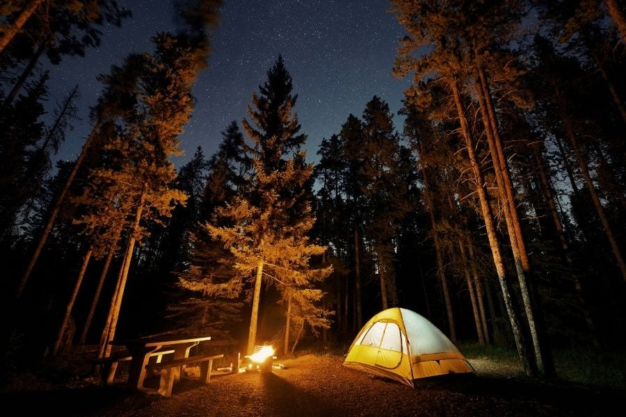 An orange and white tent is illuminated by a campfire in a forested campground