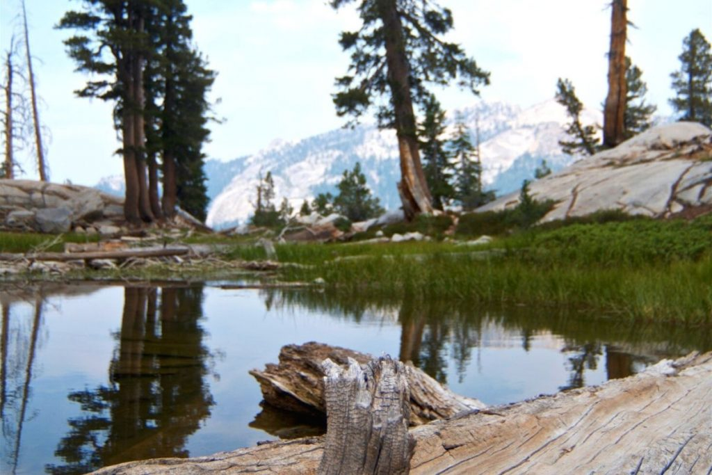 Shores of Franklin Lake in Sequoia National Park