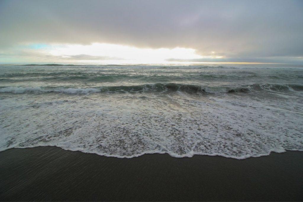 Gold Bluffs Beach in Redwood National Park