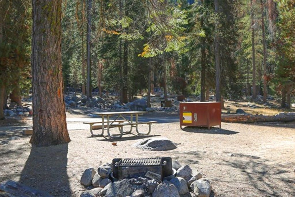 Lodgepole Campground in Sequoia National Park