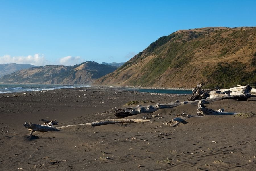 Driftwood is scattered across the dark san on Mattole Beach in the Lost Coast