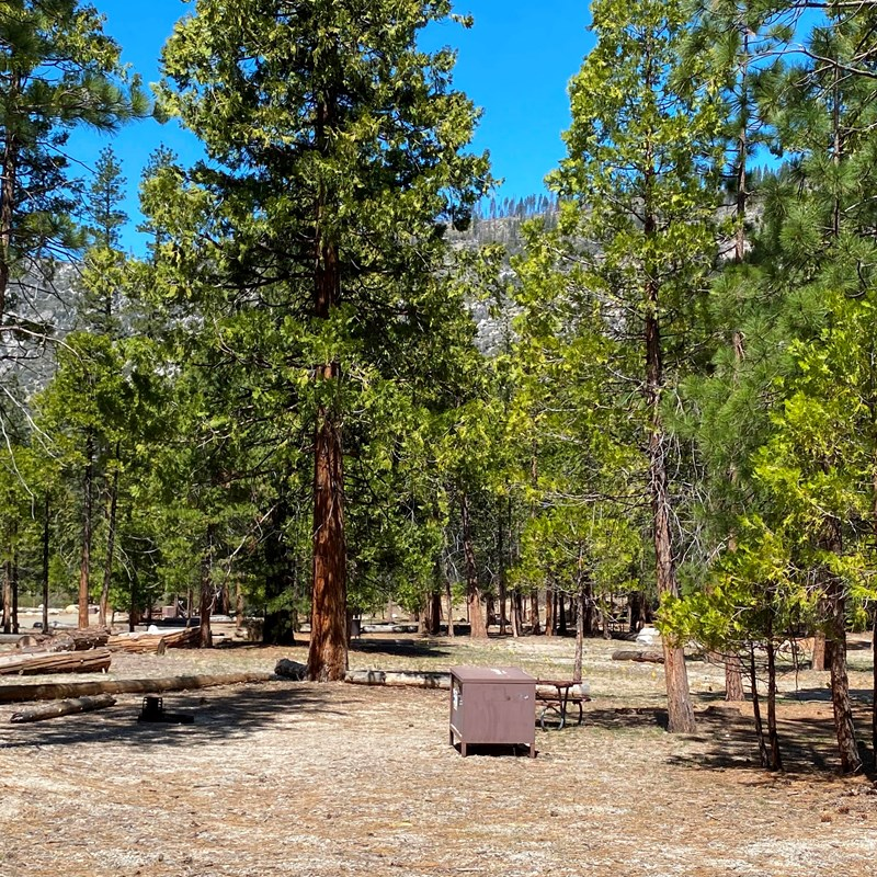 Moraine Campground in Kings Canyon National Park