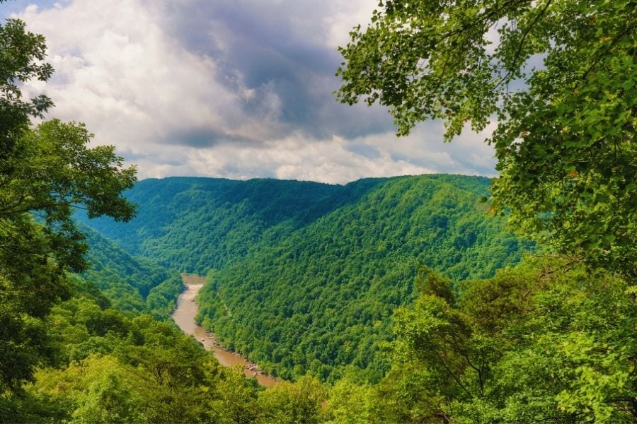A river runs through lush green trees in New River Gorge National Park