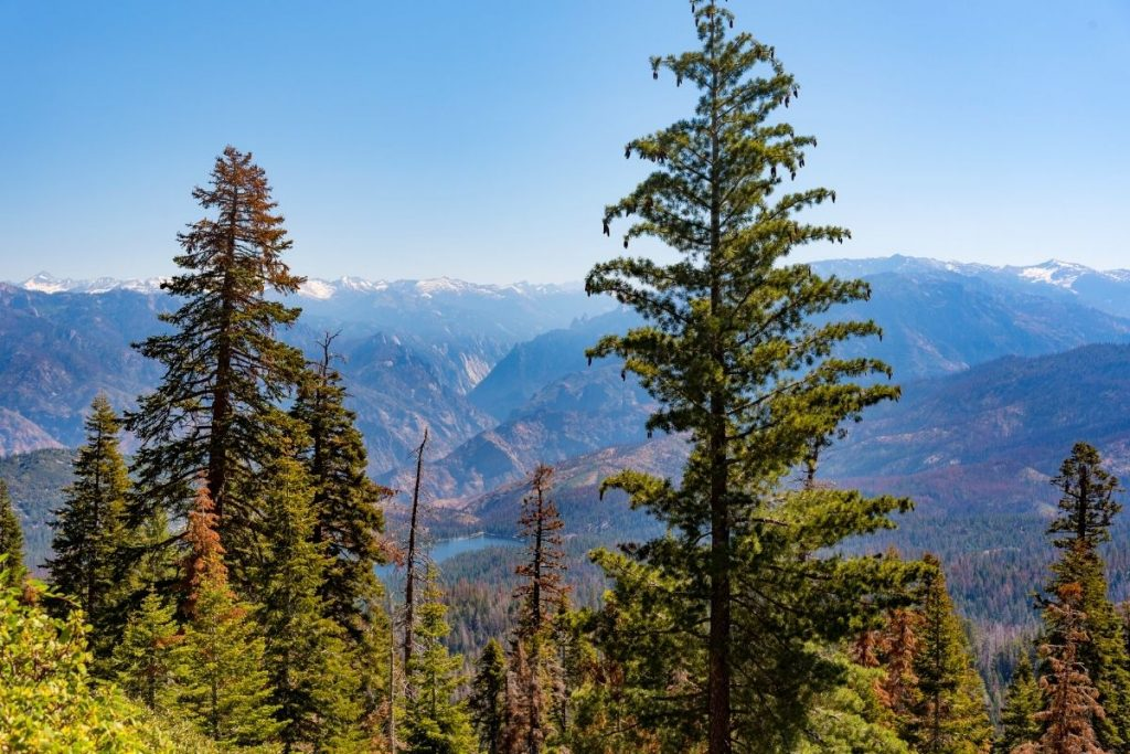 View of Kings Canyon mountains from Panoramic Point