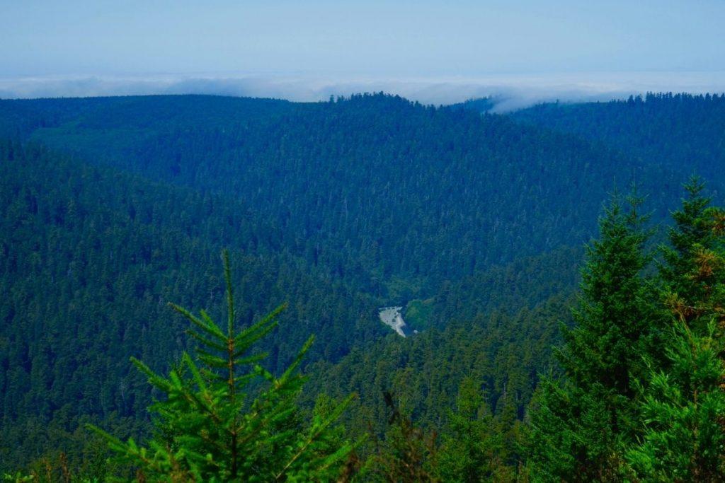 Redwood Creek OverlookKlamath River Overlook in Redwood National Park