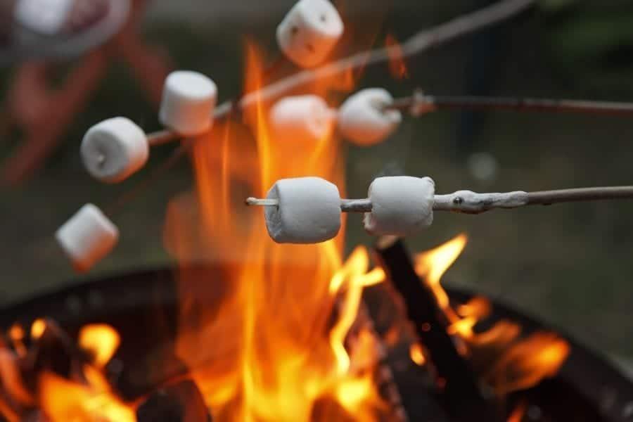 Marshmallows roast on sticks above an open campfire