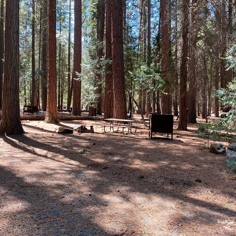 Sentinel Campground in Kings Canyon National Park