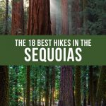 Best hikes in Sequoia National Park Pinterest pin