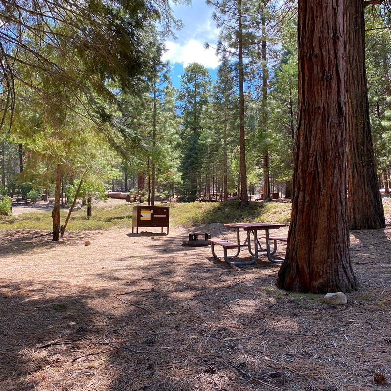 Sheep Creek Campground in Kings Canyon National Park