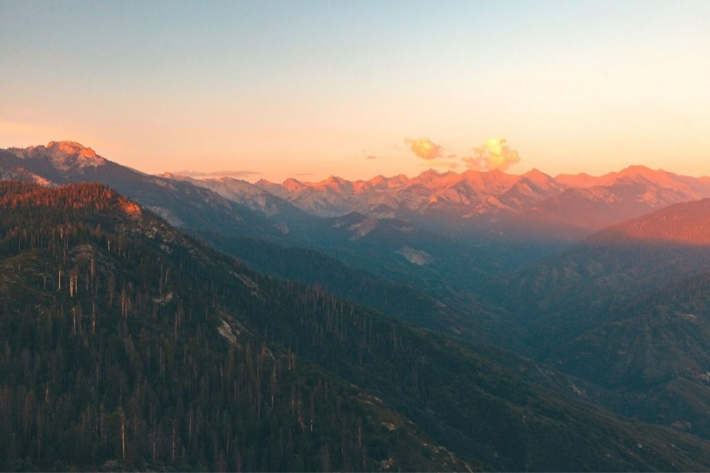 View of sequoias and the Sierra Nevada Mountains from Moro Rock