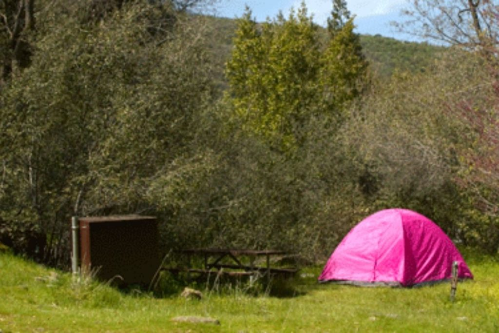 Campsite in South Fork Campground in Sequoia National Park